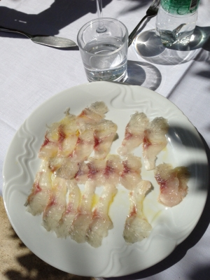 Sea Bass carpaccio