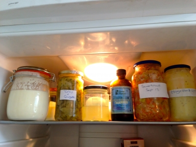 A bountiful fridge: raw milk kefir, ferments, whey, fermented cod liver oil, fermented mayonnaise