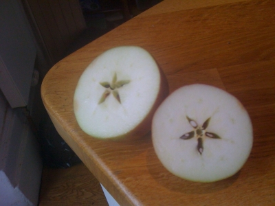 Apple in two halves
