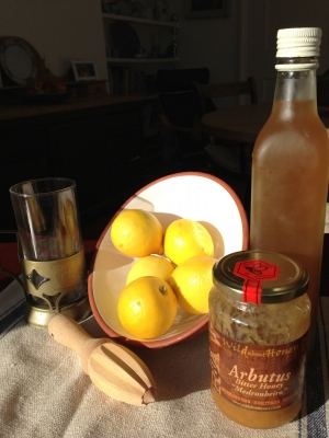 Warm lemon, apple cider vinegar and honey drink